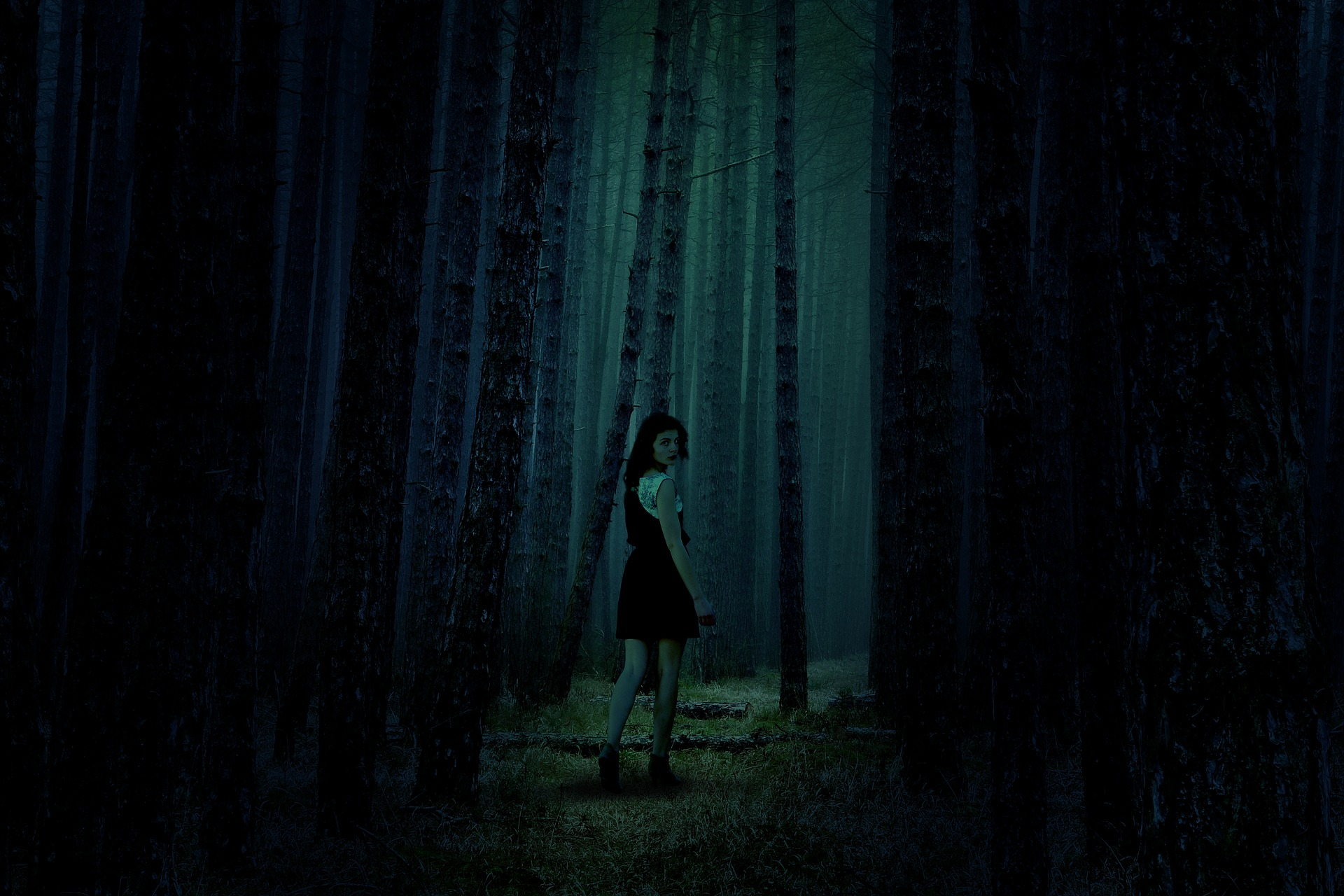 Lillian Carney- Disappeared in the woods