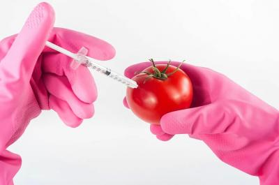 GMO Conspiracy Theory:  when man replaces nature