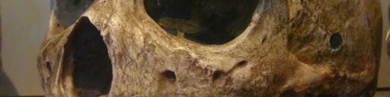 The Broken Hill Skull or Kabwe 1: a prehistoric enigma
