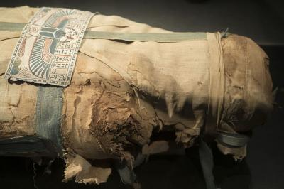Svetlana Balabanova's drug mummies and Egyptian transeoceanic travel